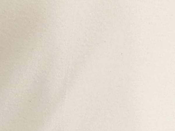 Herren Langarm-Shirt PureNATURE aus reiner Bio-Baumwolle