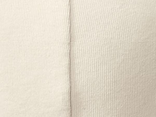 Herren Slip PureNATURE aus reiner Bio-Baumwolle