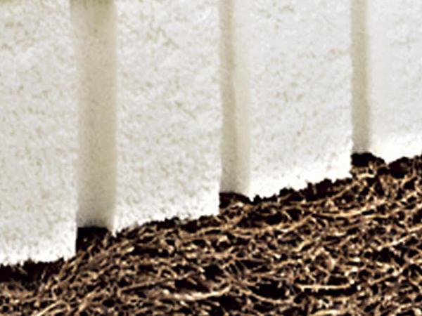 Jugendmatratze SARA mit Bio-Baumwolle bis 200 cm Bettlänge