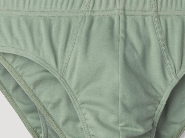 PureDAILY briefs in a set of 2 made of pure organic cotton