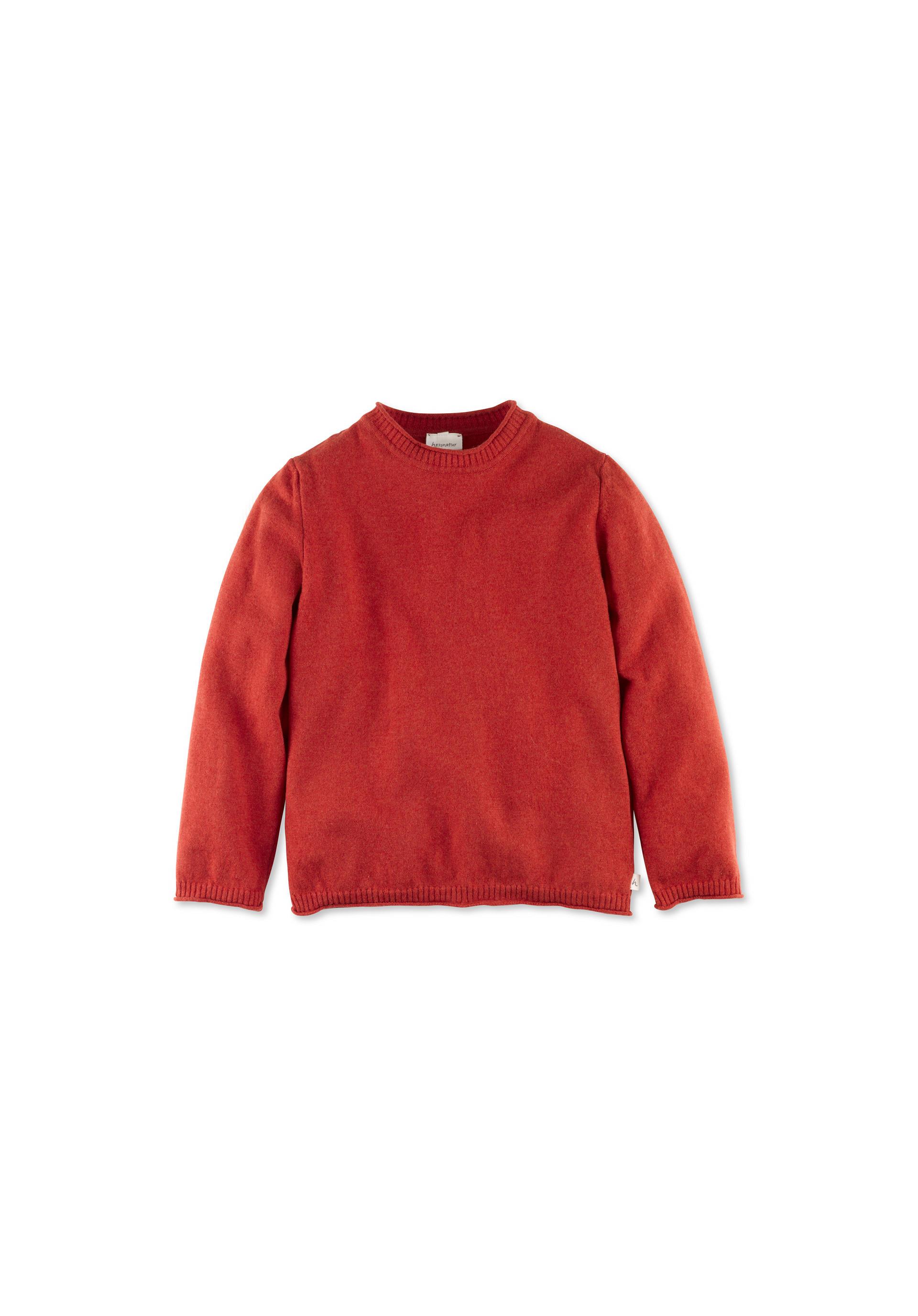 reputable site 34557 36c68 Pullover aus reiner Schurwolle von hessnatur